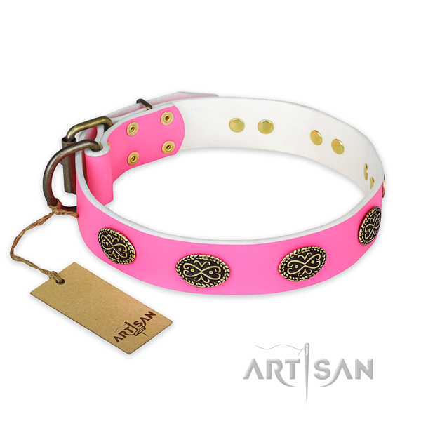 Extraordinary full grain leather dog collar for walking