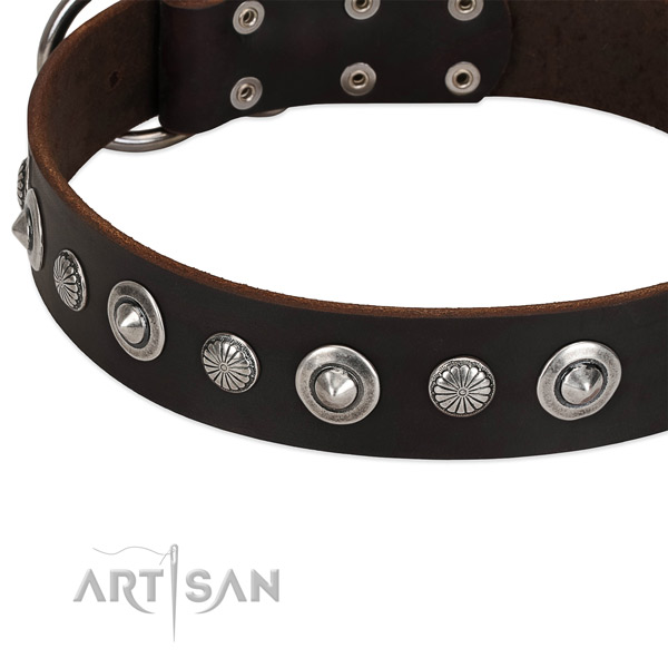Incredible studded dog collar of reliable full grain genuine leather