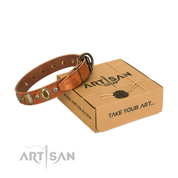 Decorated full grain genuine leather dog collar with reliable fittings
