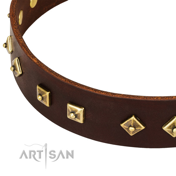 Adorned genuine leather collar for your impressive doggie