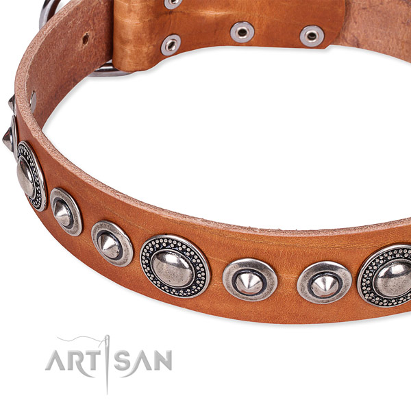 Basic training decorated dog collar of finest quality full grain natural leather
