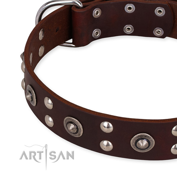 Full grain genuine leather collar with corrosion resistant hardware for your beautiful canine