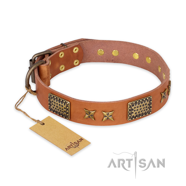 Easy to adjust full grain genuine leather dog collar with reliable traditional buckle