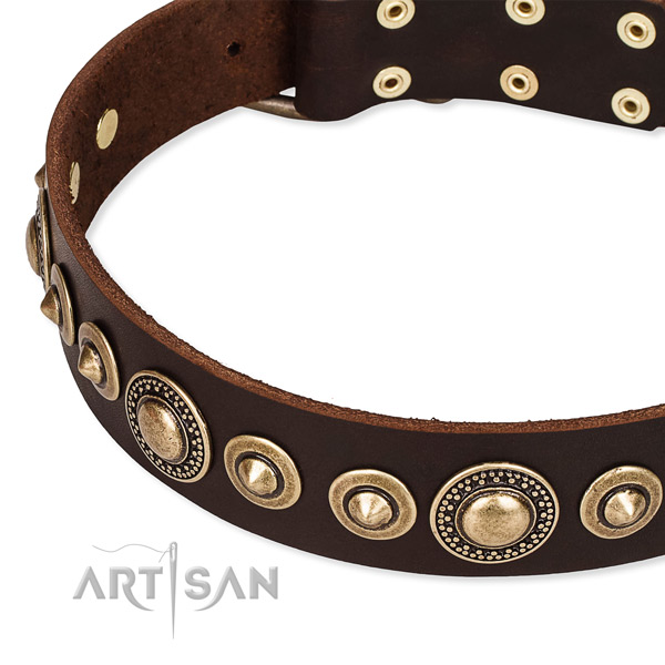 Top notch full grain natural leather dog collar crafted for your beautiful canine