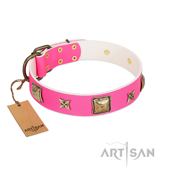 Full grain natural leather dog collar of flexible material with stylish adornments