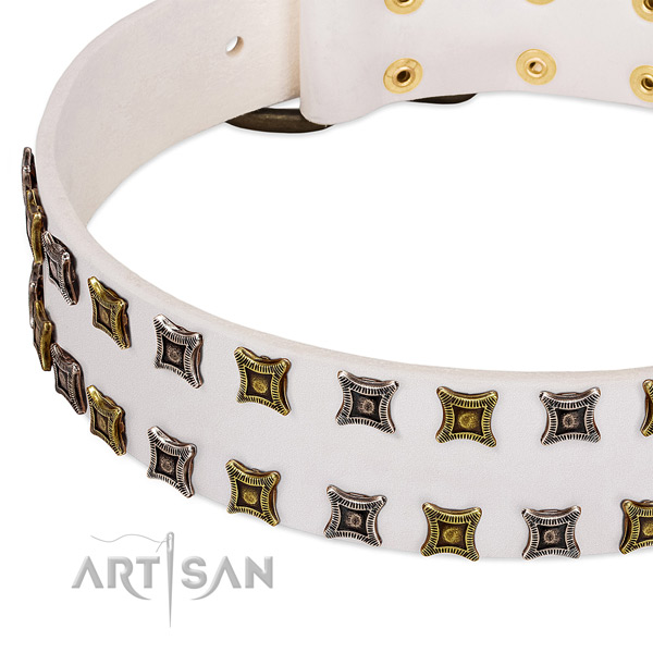 Quality natural leather dog collar for your impressive doggie