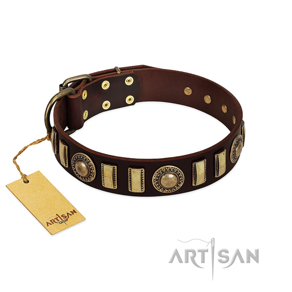 Soft to touch full grain leather dog collar with corrosion proof traditional buckle