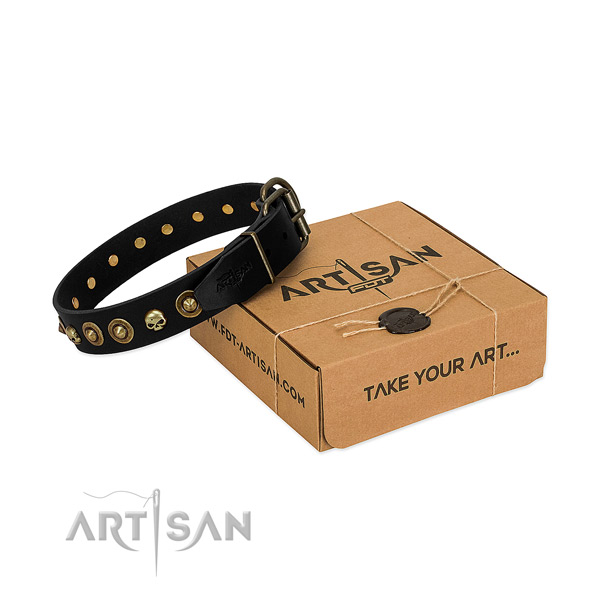Full grain leather collar with significant studs for your canine