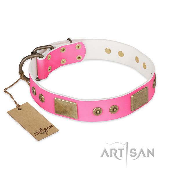 Unusual genuine leather dog collar for handy use