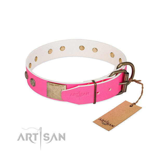Strong decorations on everyday use dog collar