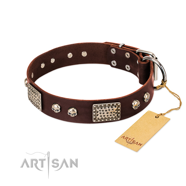 Easy wearing natural genuine leather dog collar for basic training your four-legged friend