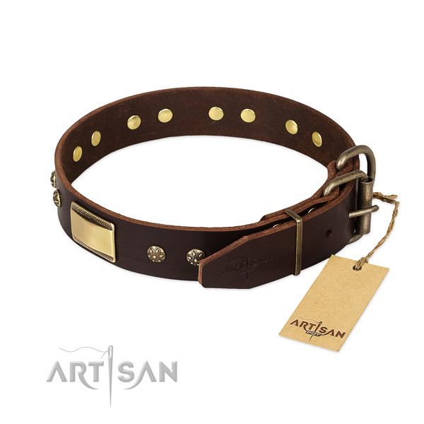 Embellished full grain leather collar for your pet