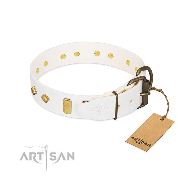 Soft full grain natural leather dog collar with strong hardware