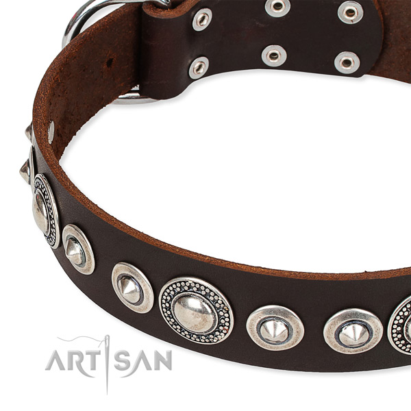 Fancy walking embellished dog collar of top notch full grain genuine leather