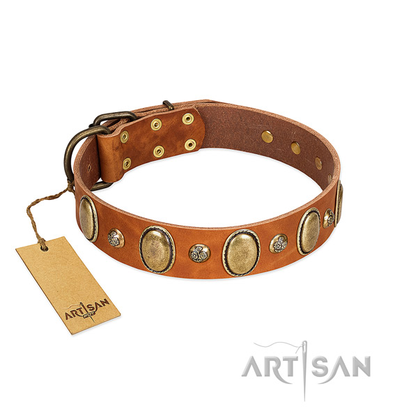 Full grain natural leather dog collar of reliable material with inimitable decorations