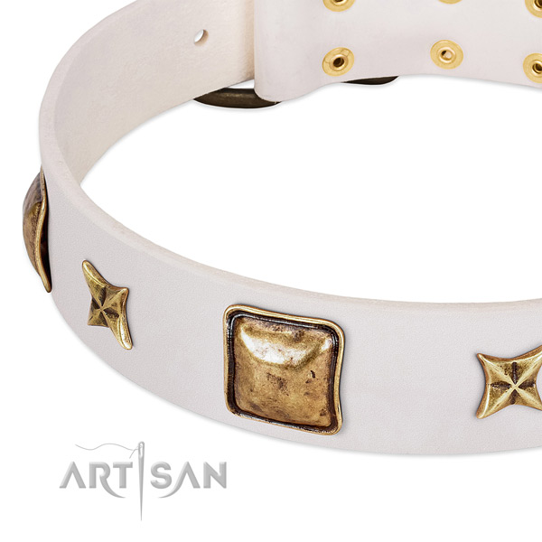 Rust-proof embellishments on leather dog collar for your pet