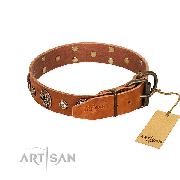 Reliable hardware on full grain leather collar for stylish walking your canine