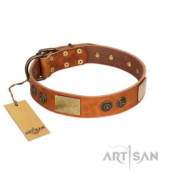 Easy wearing full grain leather dog collar for easy wearing