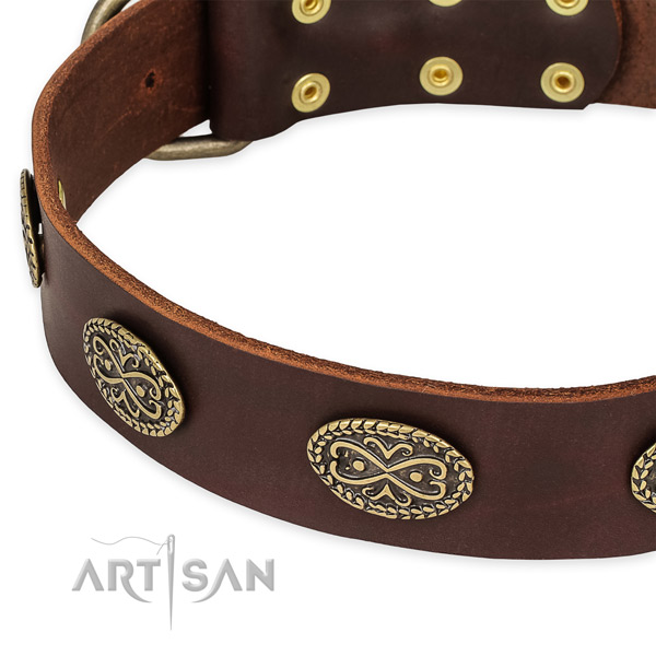 Trendy natural genuine leather collar for your attractive canine