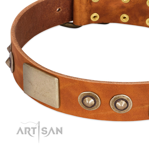 Reliable traditional buckle on full grain leather dog collar for your canine