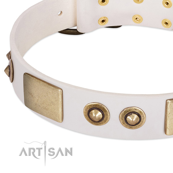 Strong adornments on natural genuine leather dog collar for your canine