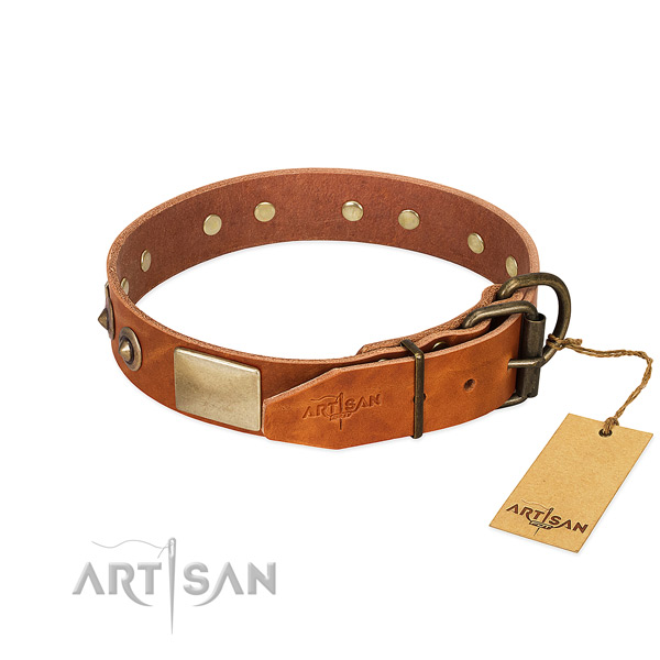 Strong traditional buckle on everyday use dog collar