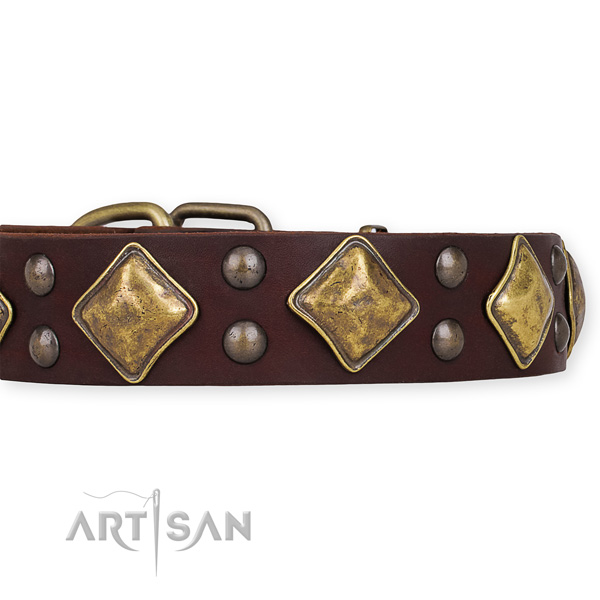 Genuine leather dog collar with extraordinary rust-proof decorations
