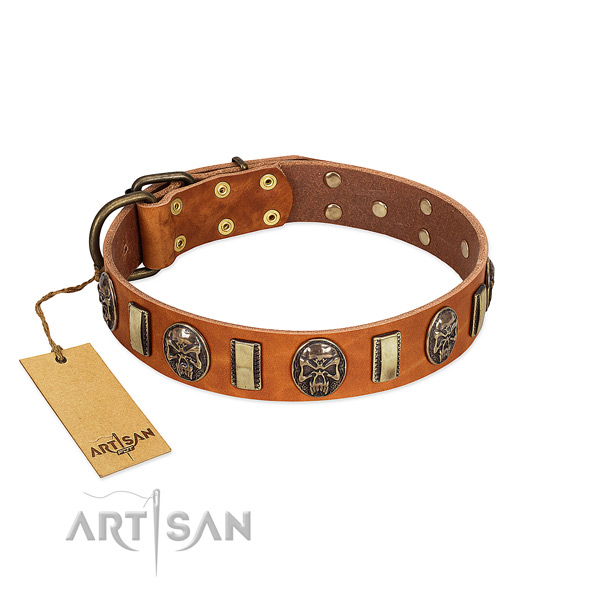 Perfect fit full grain genuine leather dog collar for handy use