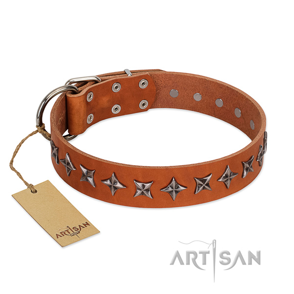 Handy use dog collar of best quality full grain genuine leather with decorations
