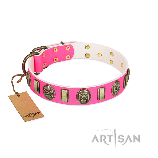 Reliable decorations on leather dog collar for your doggie