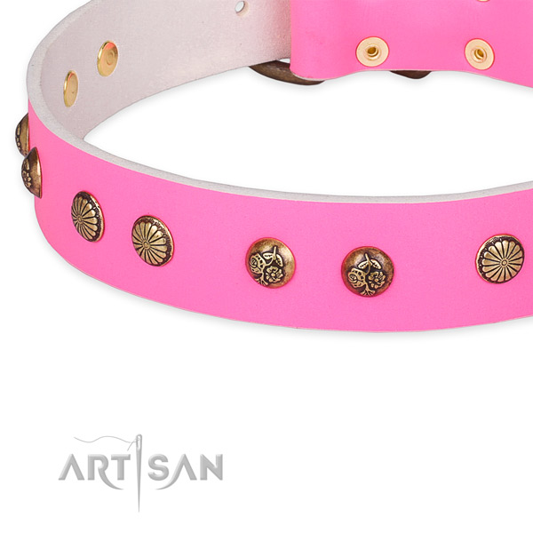 Studded full grain leather collar for your lovely doggie