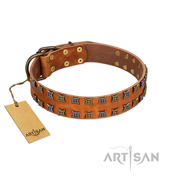 Flexible leather dog collar with embellishments for your dog
