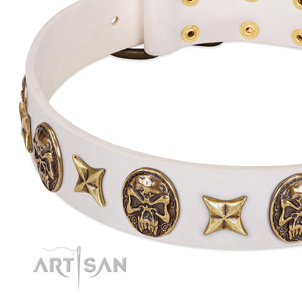 Amazing dog collar made for your handsome canine