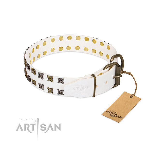 Leather collar with remarkable studs for your dog