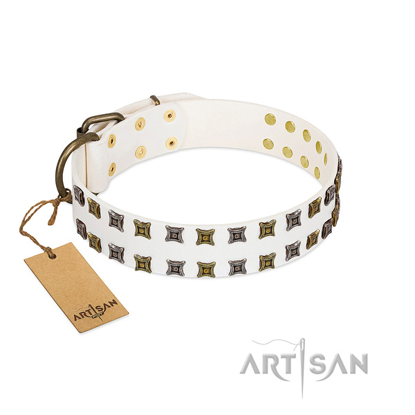 Quality natural leather dog collar with embellishments for your dog