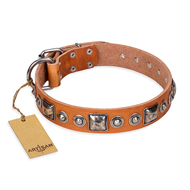 """Era of Future"" FDT Artisan Handcrafted Tan Leather Belgian Malinois Collar with Decorations"