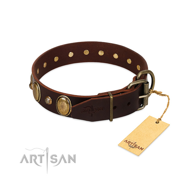 Corrosion resistant hardware on full grain leather collar for fancy walking your pet