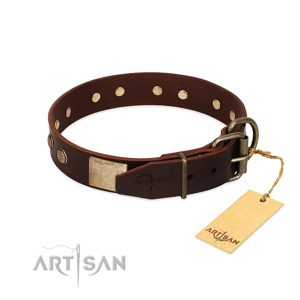 Rust resistant buckle on stylish walking dog collar