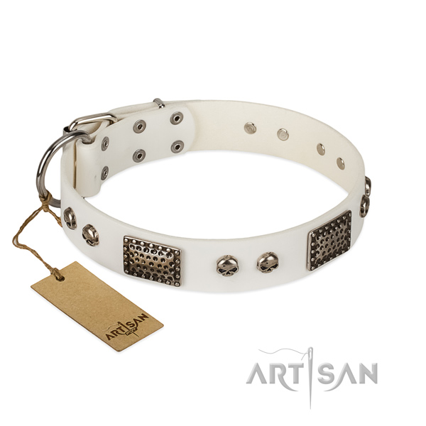 Adjustable leather dog collar for walking your doggie