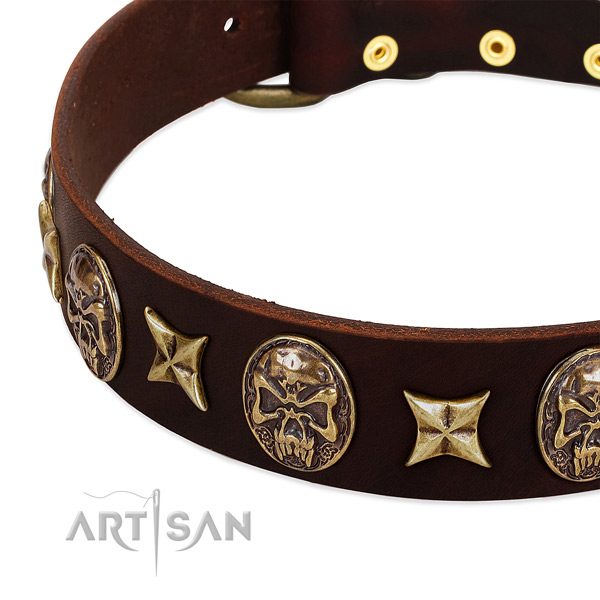 Corrosion proof embellishments on full grain genuine leather dog collar for your dog