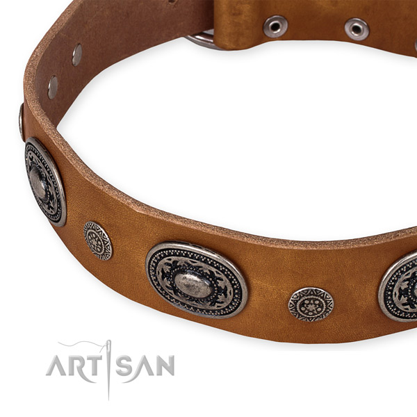Reliable genuine leather dog collar made for your lovely canine