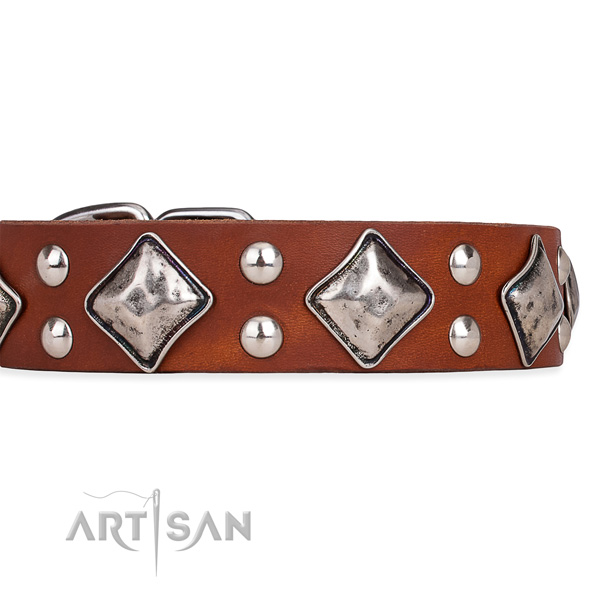 Genuine leather dog collar with remarkable corrosion proof embellishments