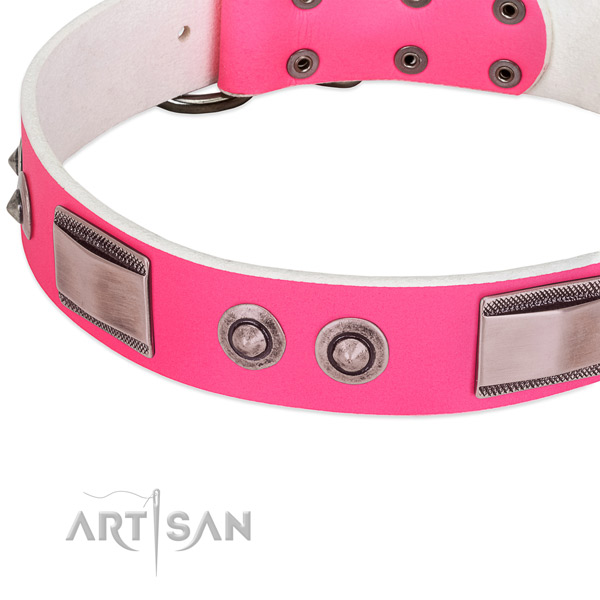Exquisite full grain leather collar with adornments for your doggie