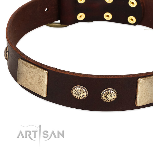 Corrosion proof D-ring on leather dog collar for your pet
