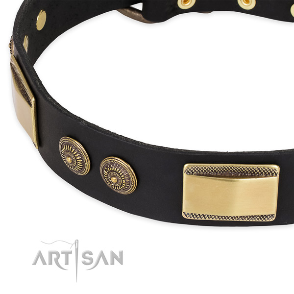Stunning genuine leather collar for your attractive pet