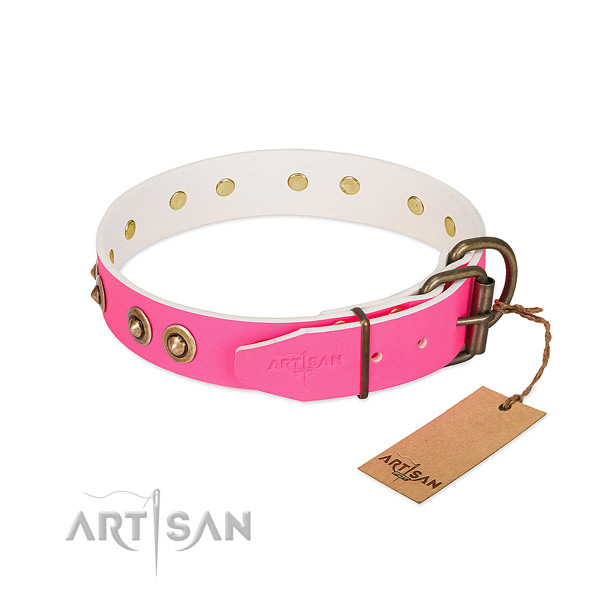 Full grain genuine leather dog collar with rust resistant hardware and embellishments