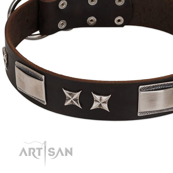 High quality full grain natural leather dog collar with reliable buckle