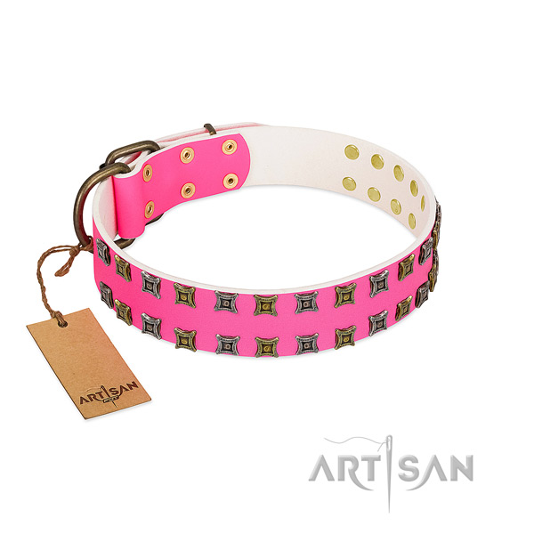 Full grain genuine leather collar with impressive studs for your doggie