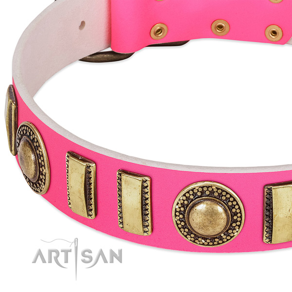Top rate full grain leather dog collar for your impressive pet