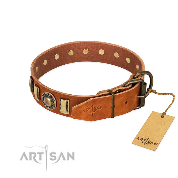 Decorated leather dog collar with corrosion proof fittings